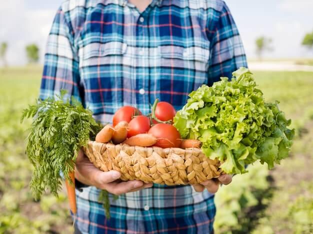 Curso en Cultivos Vegetales